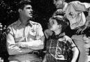 Goodbye Mayberry Changes in the American Family Dynamic